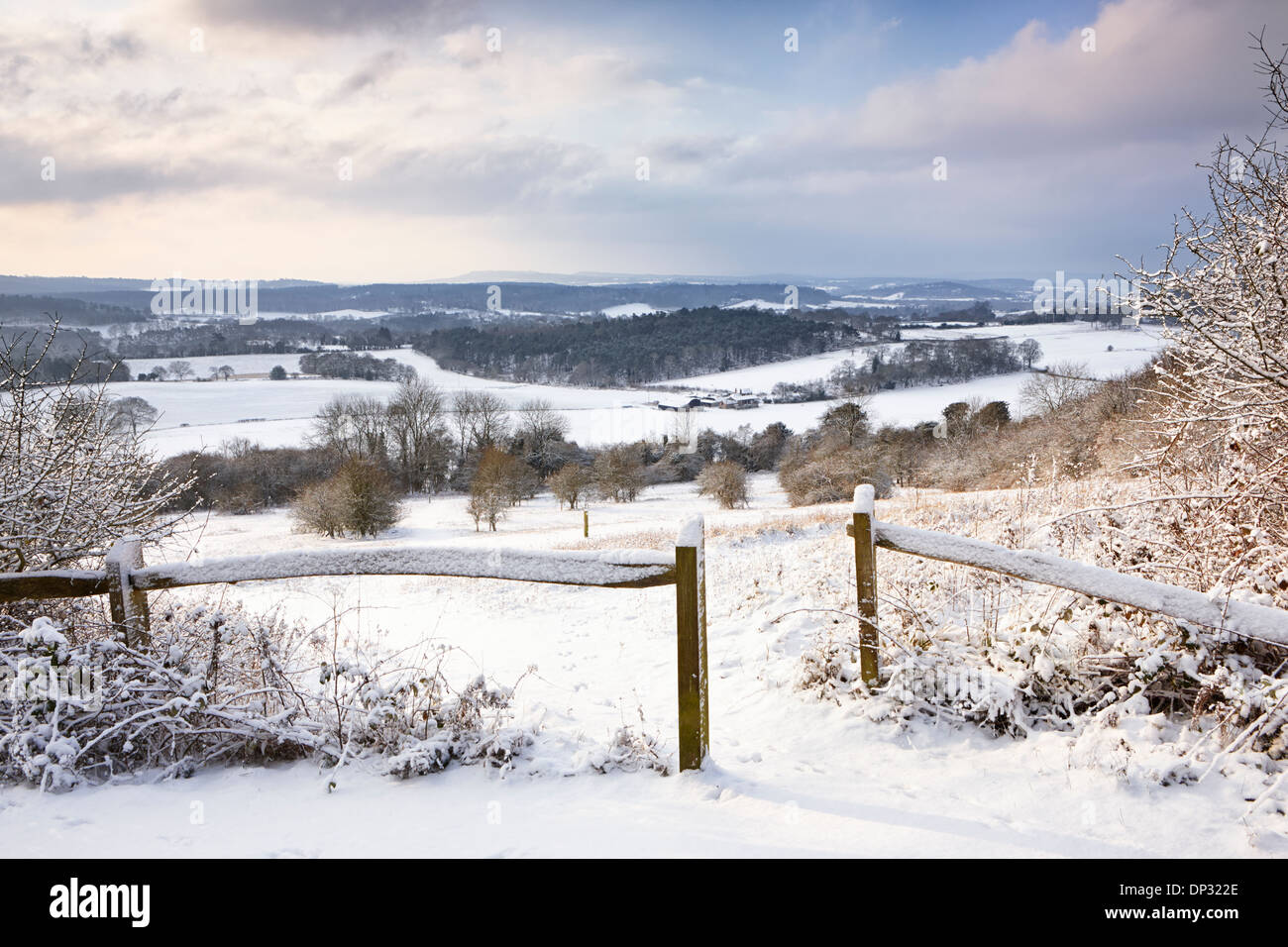 Fresh snow fall covering the Surrey landscape at Newlands Corner - Stock Image