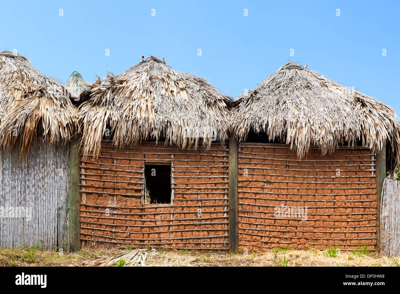Traditional Garifuna mud house with thatch roof - Stock Image