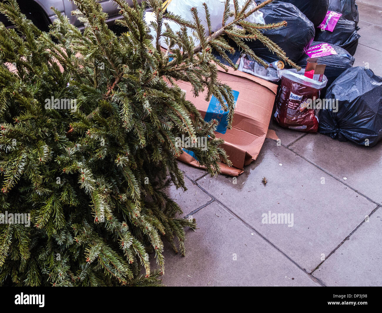 Christmas Tree Recycling Stock Photos & Christmas Tree Recycling ...