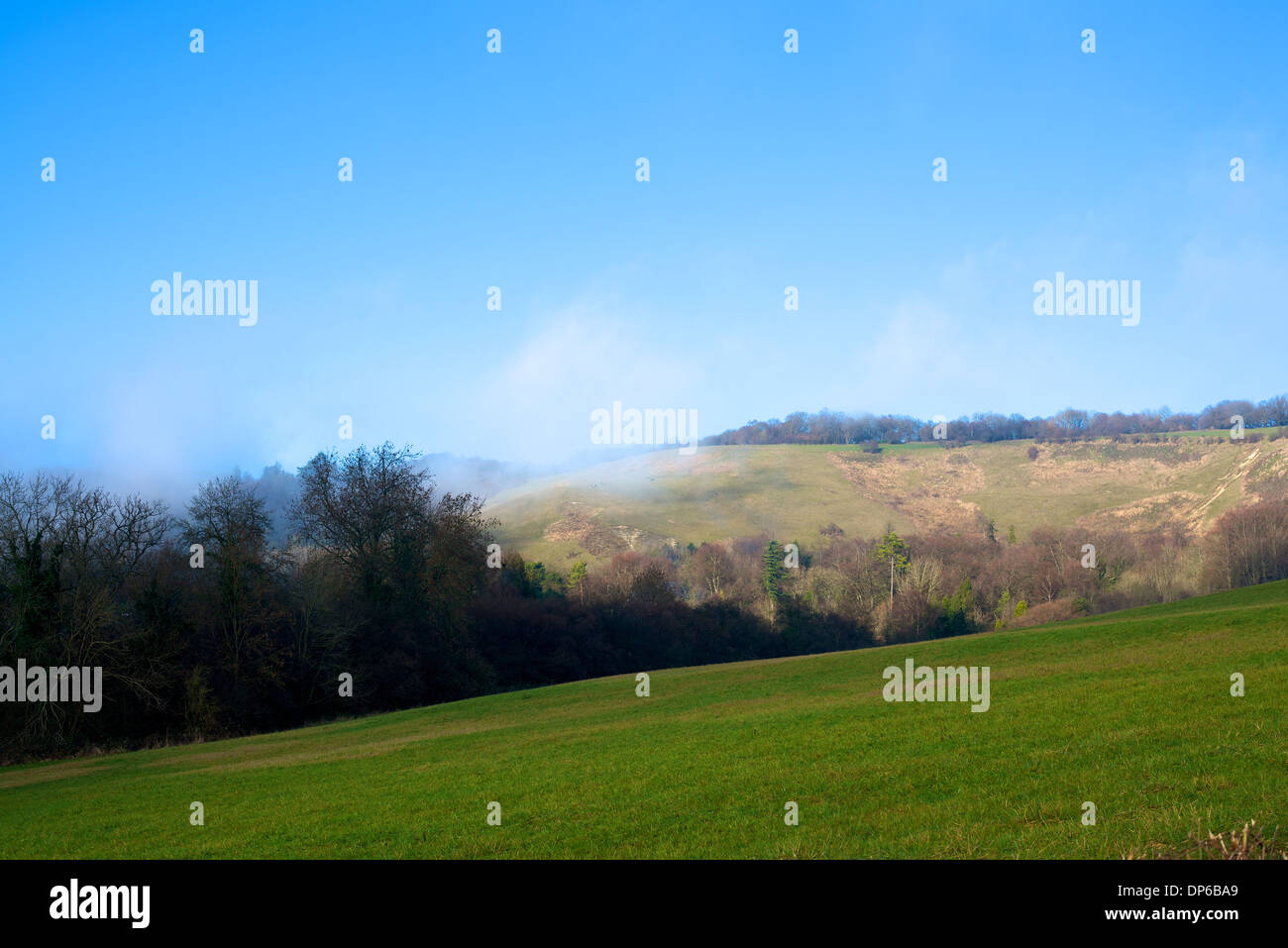 The white chalk scarp of the North Downs at Colley Hill, Reigate, Surrey with katabatic (uphill) winds forming light cloud - Stock Image