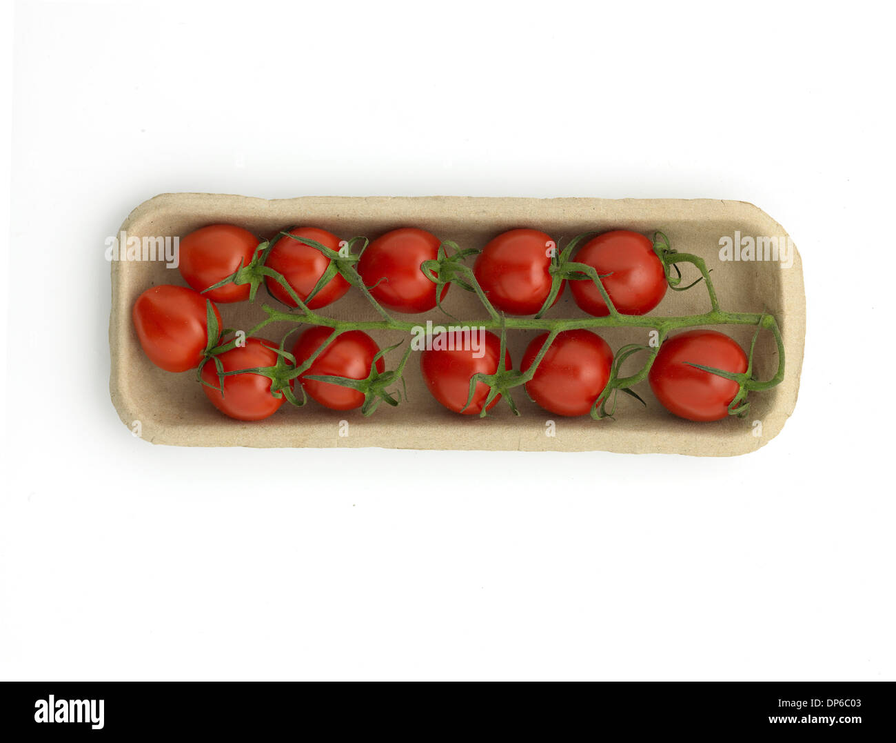 organic, vine tomatoes in recyclable tray - Stock Image