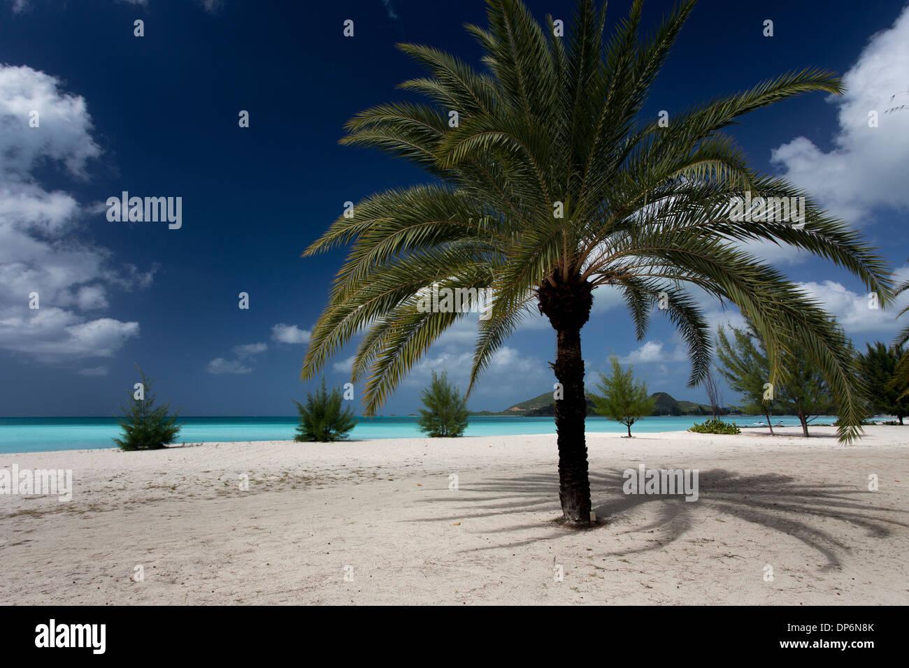 Jolly Beach, Antigua, Leeward Islands, West Indies - Stock Image