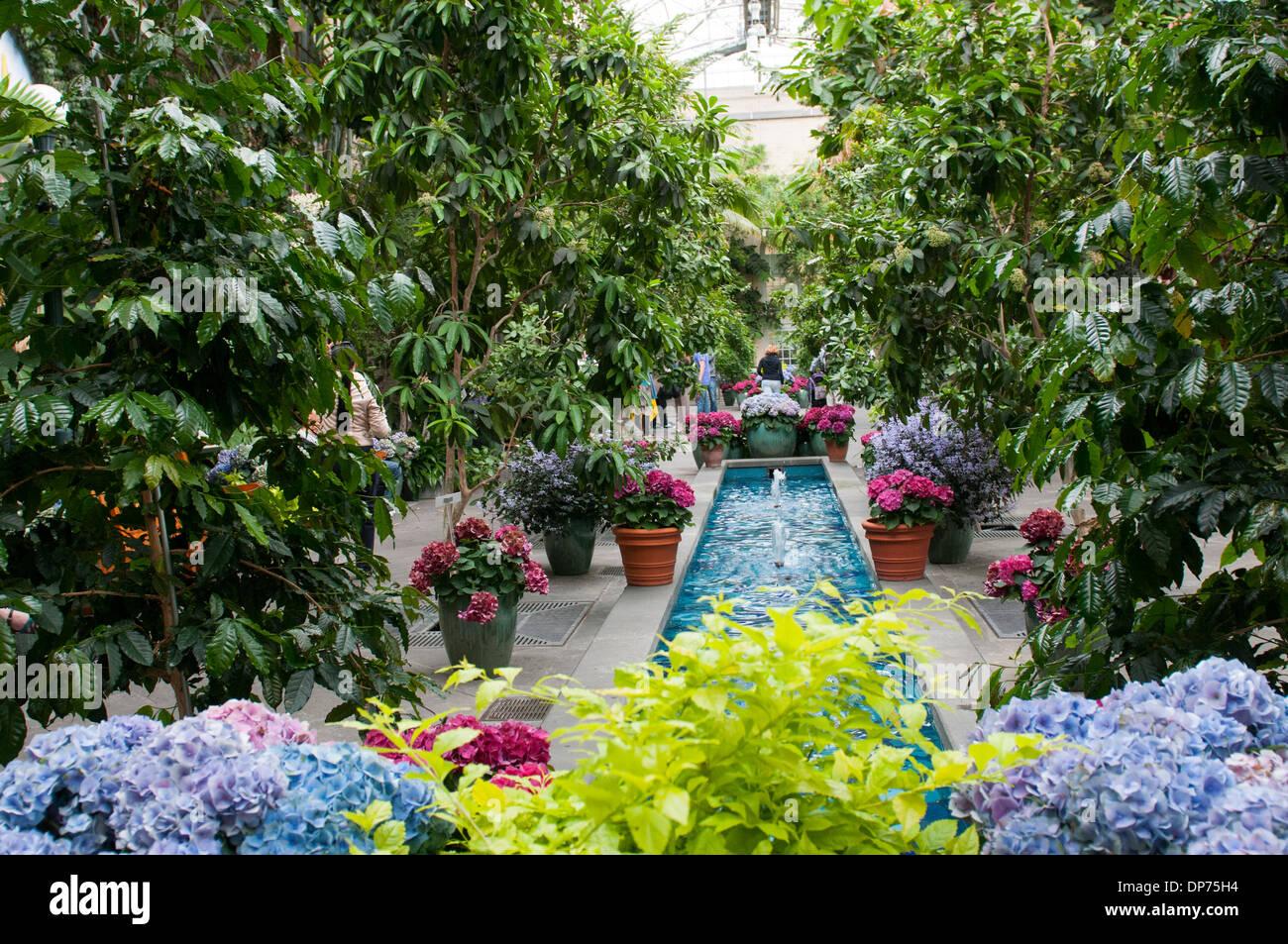 Inside The United States Botanic Garden In Washington DC, USA