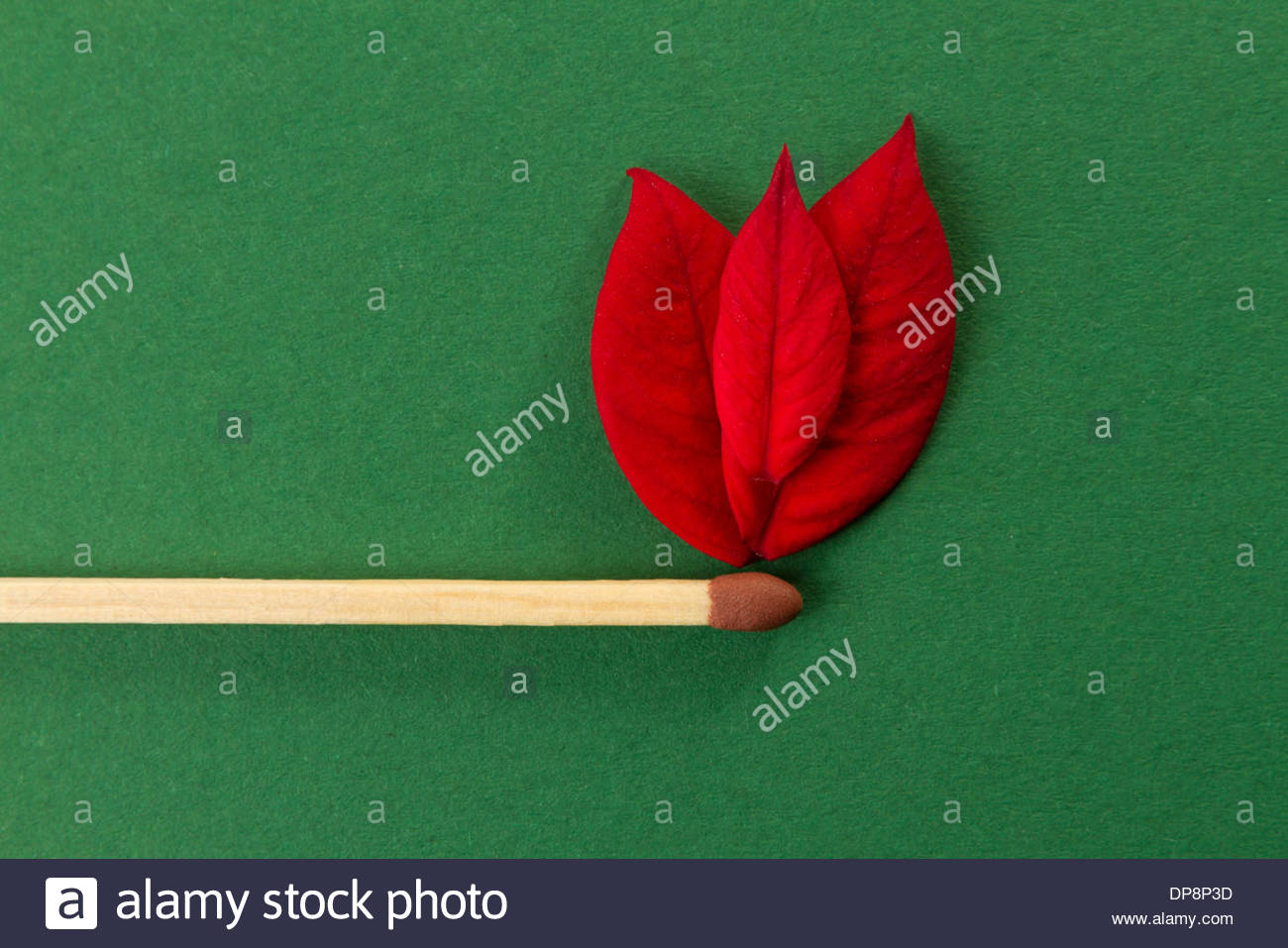 conceptual fire on match object isolated on green background - Stock Image
