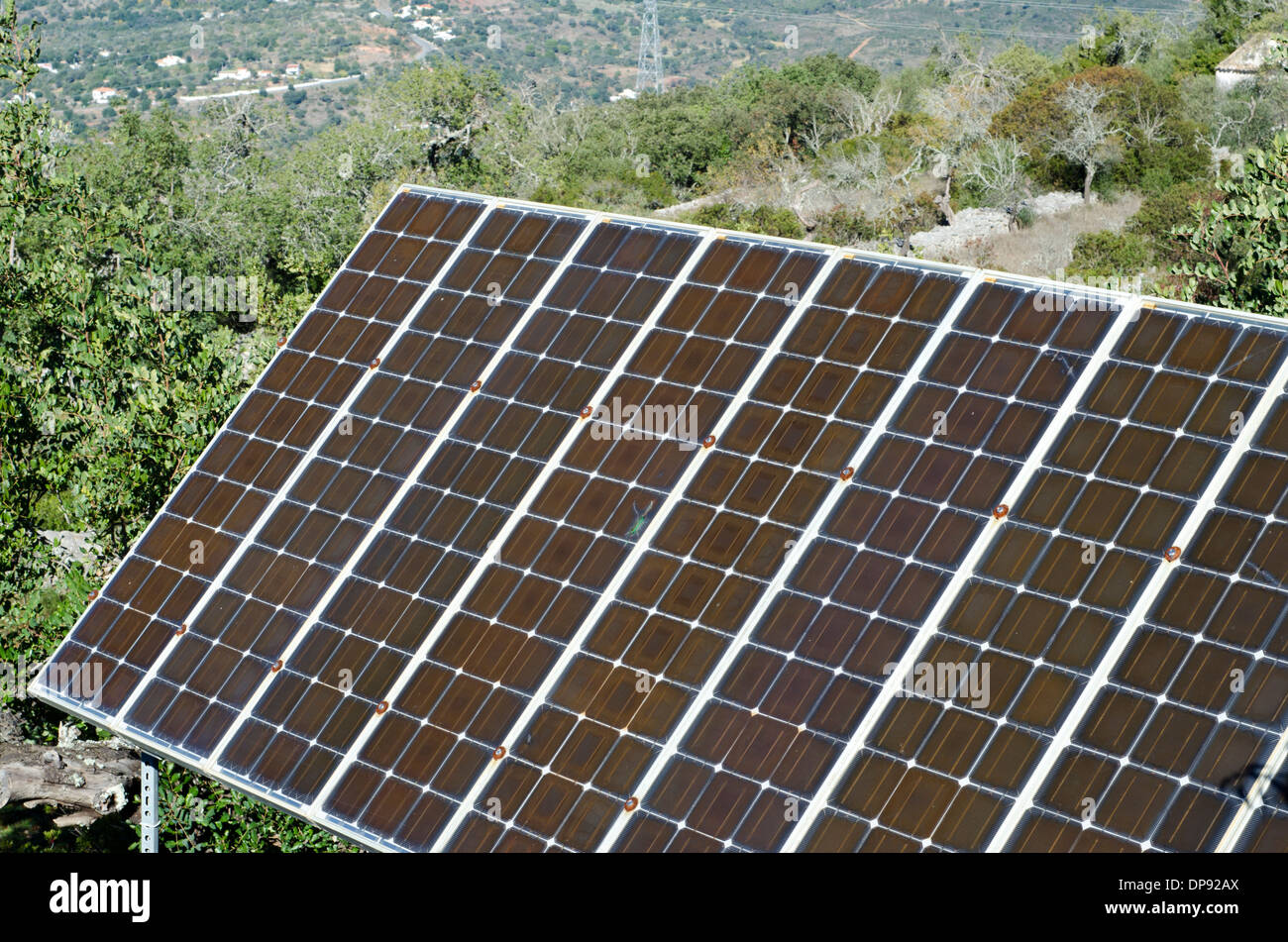 Solar Panels in countryside tree top setting. - Stock Image