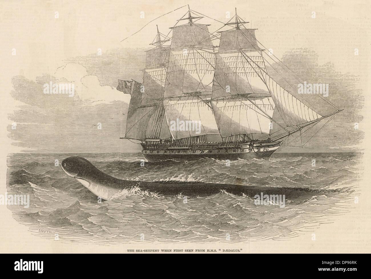 DAEDALUS SEA SERPENT - Stock Image