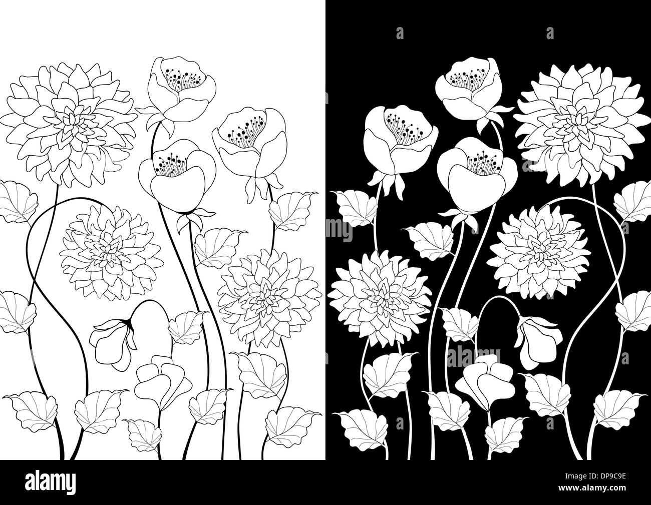 Flower Border Vertical Black And White Stock Photos Images Alamy