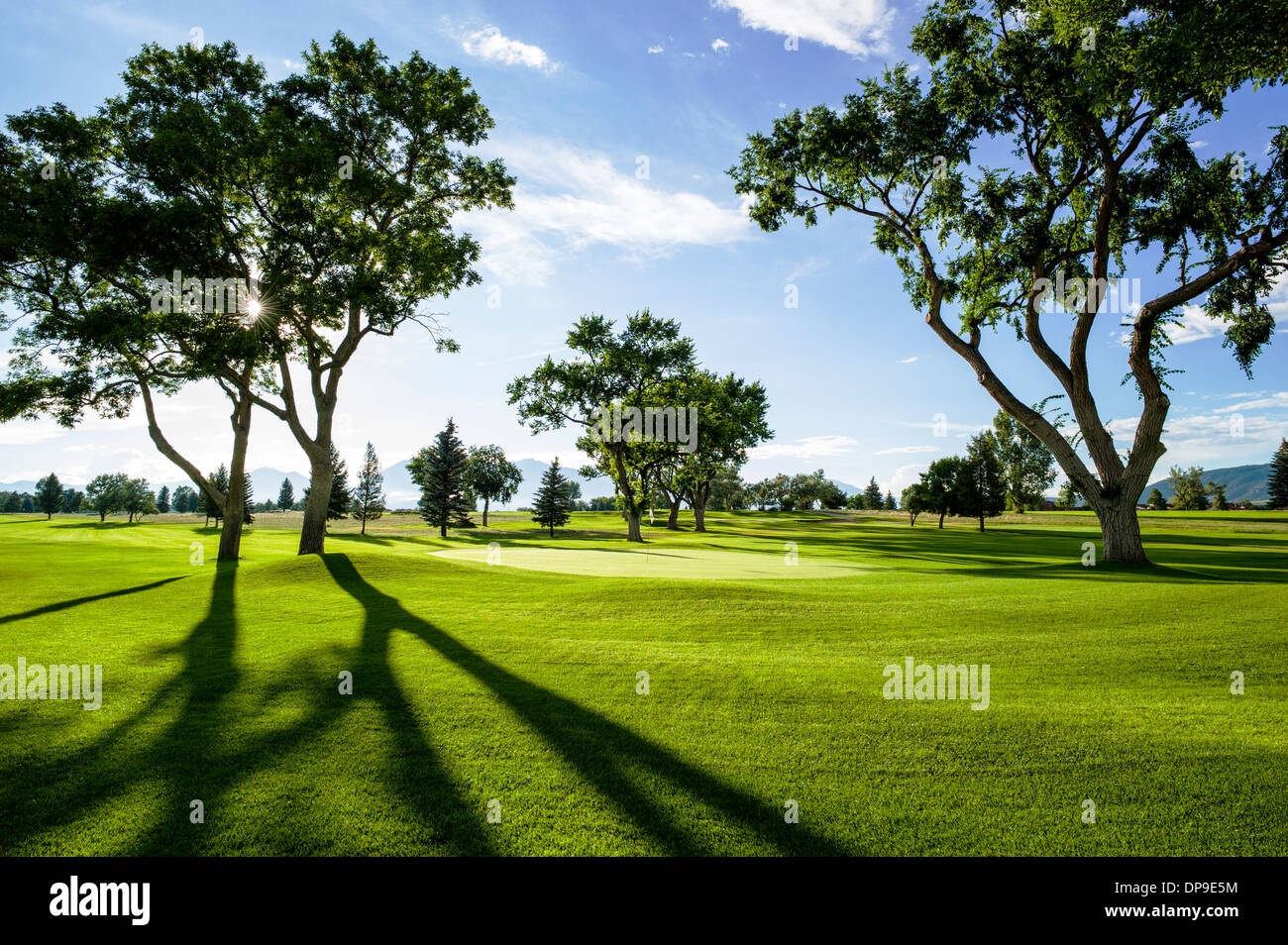 Backlit view of late afternoon light on lush nine hole Salida, Colorado, Golf Course - Stock Image
