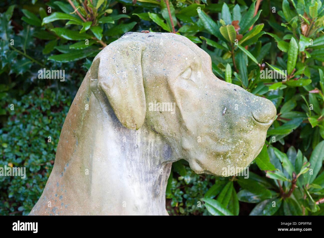 Stone statue of bloodhound large dog garden ornament stock photo stone statue of bloodhound large dog garden ornament workwithnaturefo