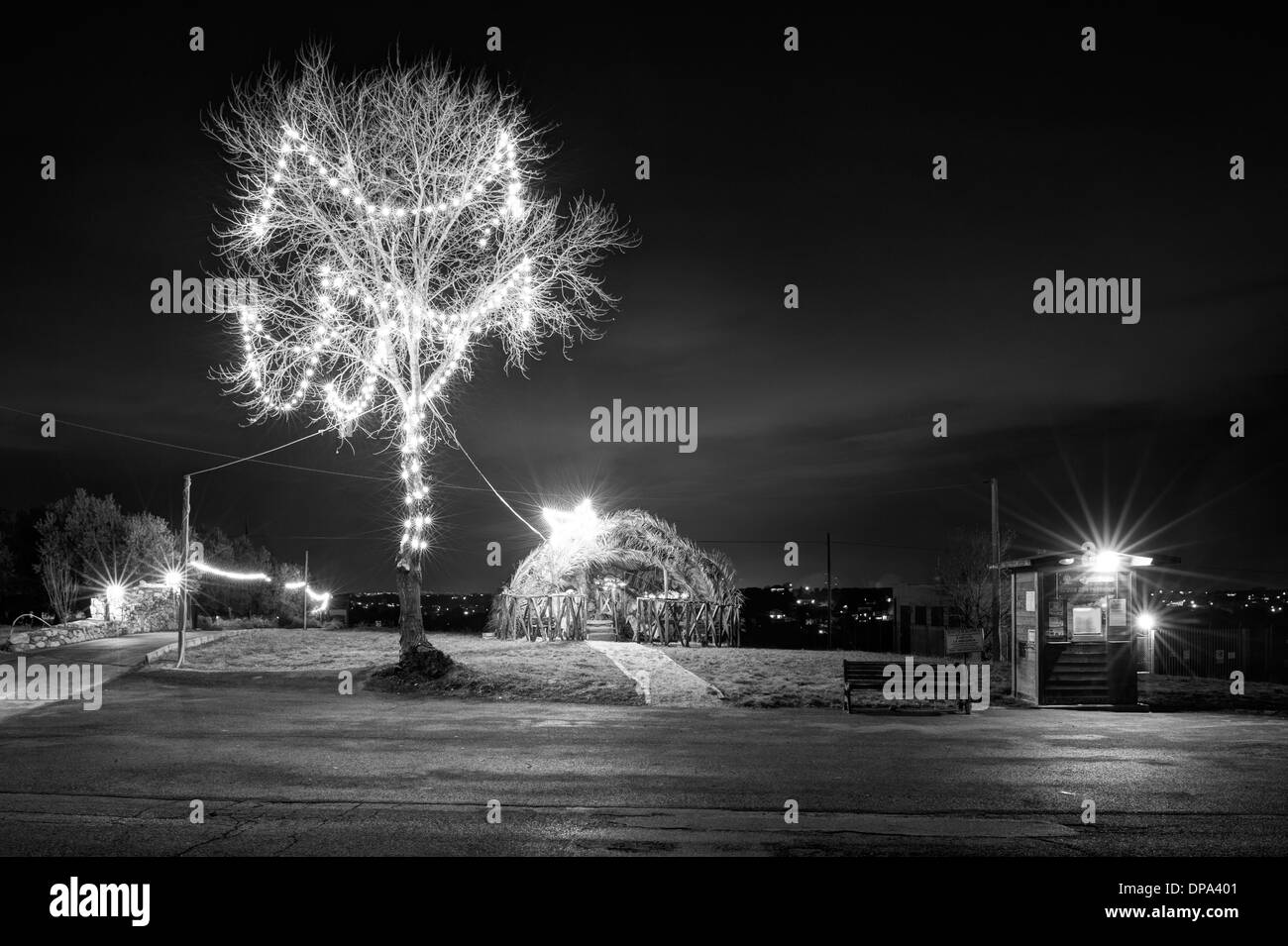 Abruzzo, Italy. Christmas tree and crib - Stock Image