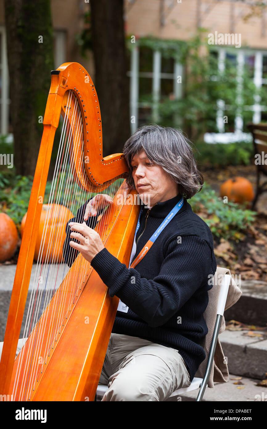 Harpist, street-musician in Old Quebec, Quebec City, Quebec, Canada - Stock Image