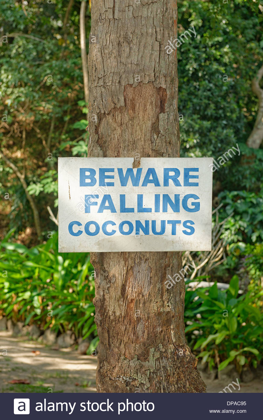 Beware of falling coconuts sign, Yasawa island group, Fiji, South Pacific islands - Stock Image