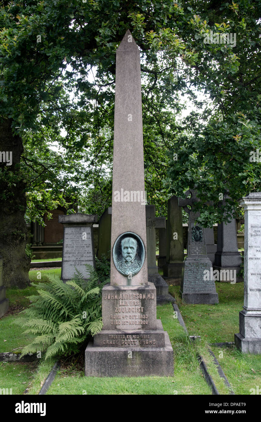 The Grave of John Anderson (4 October 1833 – 15 August 1900) who was a Scottish anatomist and zoologist. - Stock Image