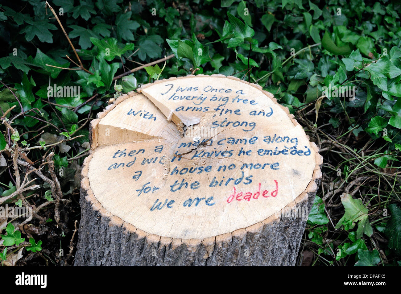 Tree stump with protest writing on regretting the loss of a native habitat, Russell Square, Bloomsbury, London England UK - Stock Image