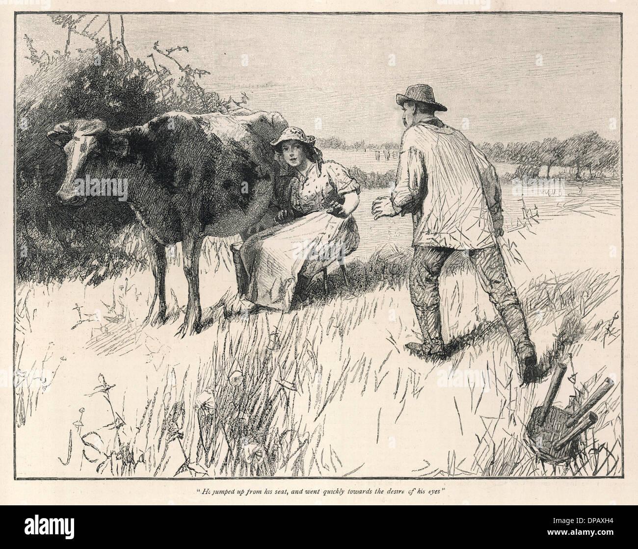HARDY/TESS D'URBERVILLES - Stock Image