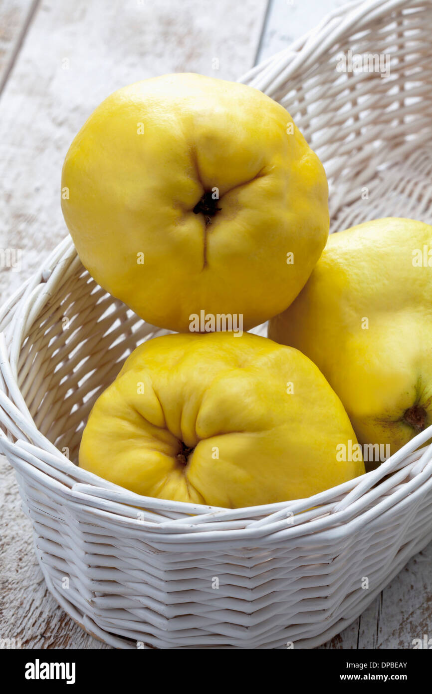 Three quinces (Cydonia oblonga) in white basket on wooden table Stock Photo