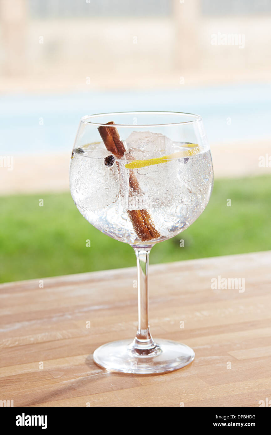 Cinnamon and juniper gin and tonic cocktail on poolside bar - Stock Image