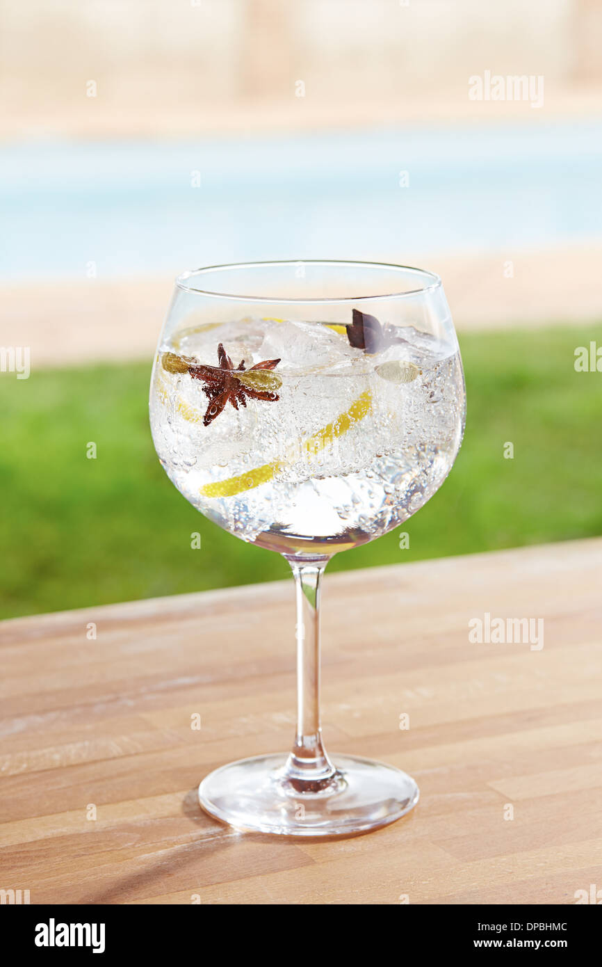 Star anise and cardamom gin and tonic cocktail on poolside bar - Stock Image
