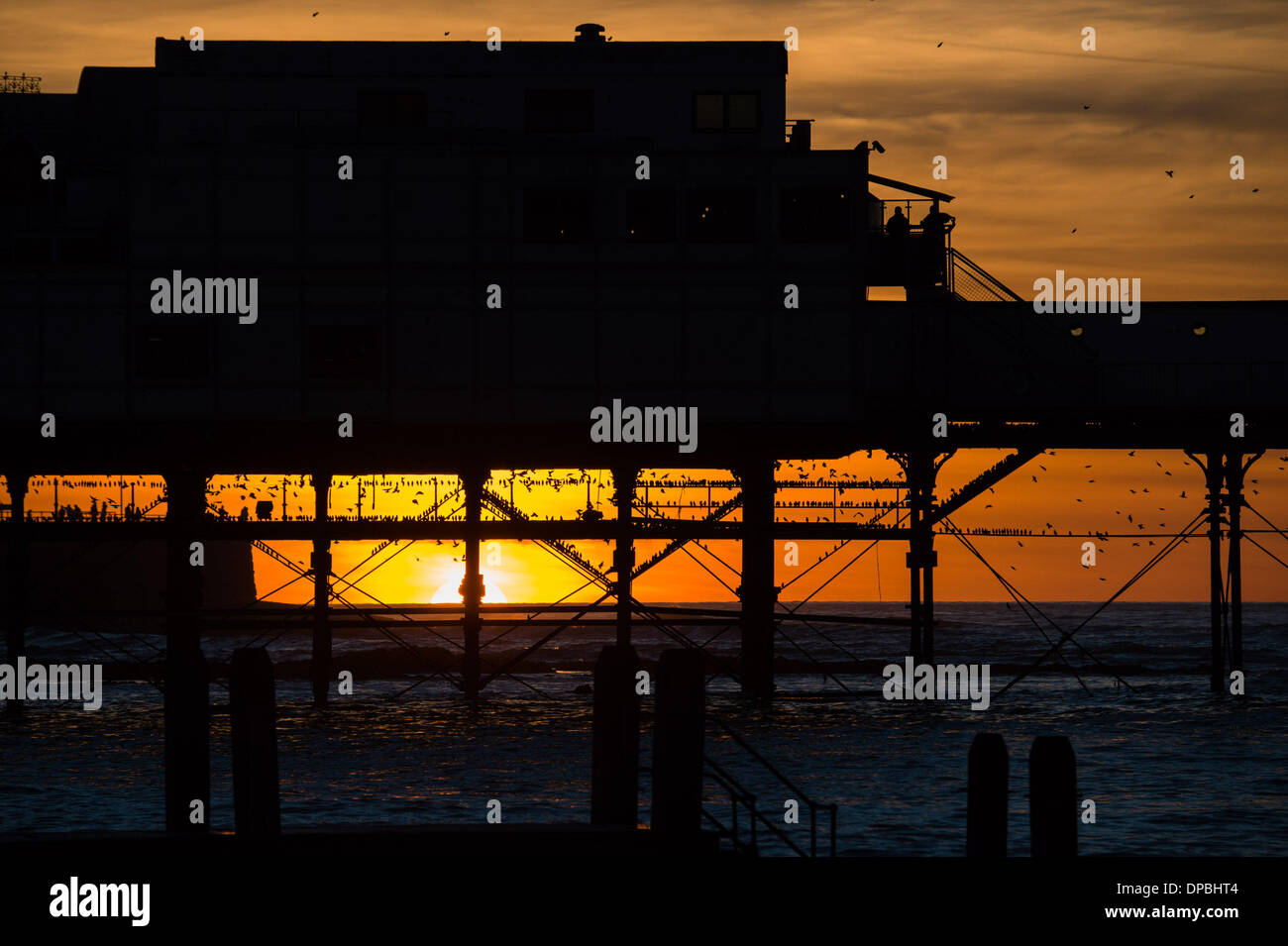 Aberystwyth, Wales, UK. 11th January 2014.   At the end of a week that saw huge storms destroying large parts of the historic Victorian promenade in Aberystwyth, tens of thousands  of starlings still return to roost under the pier at dusk  photo Credit: keith morris/Alamy Live News - Stock Image