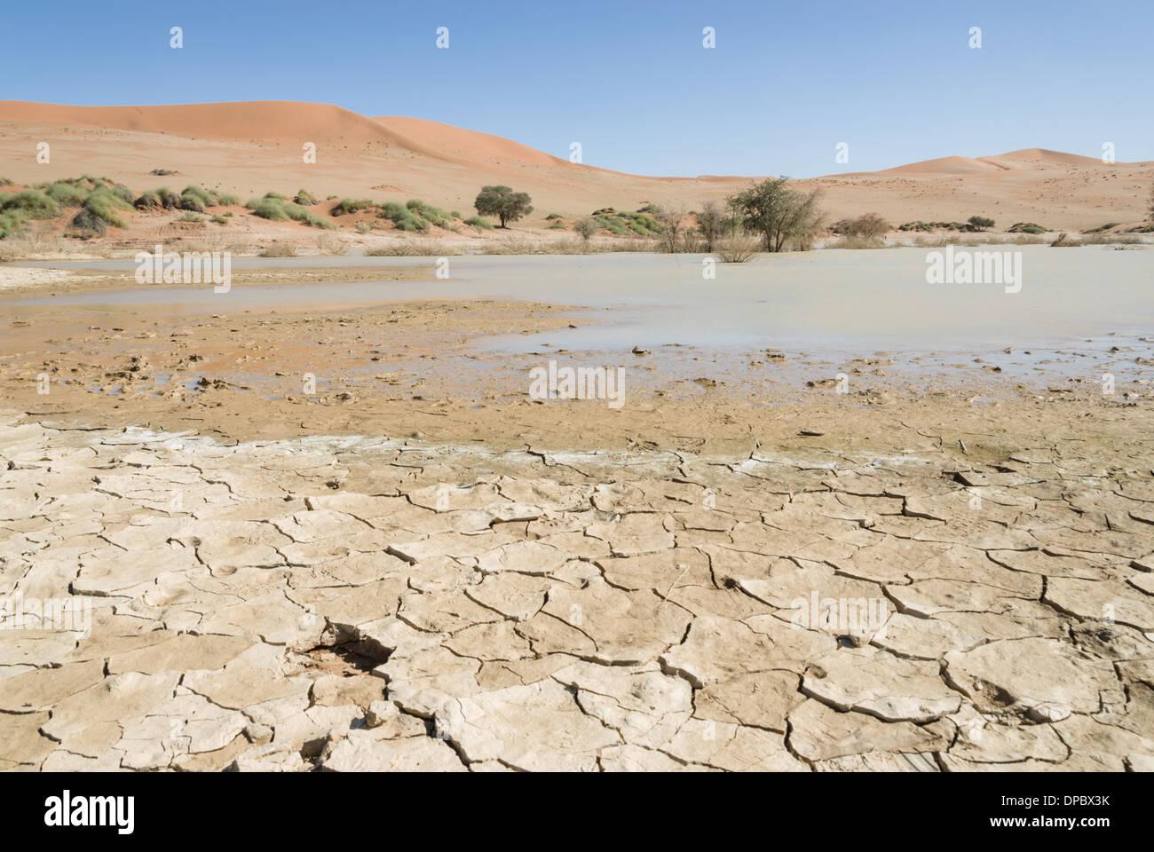 Sossusvlei lake, Namib  Naukluft National Park, Sossusvlei, Namibia, Africa. - Stock Image