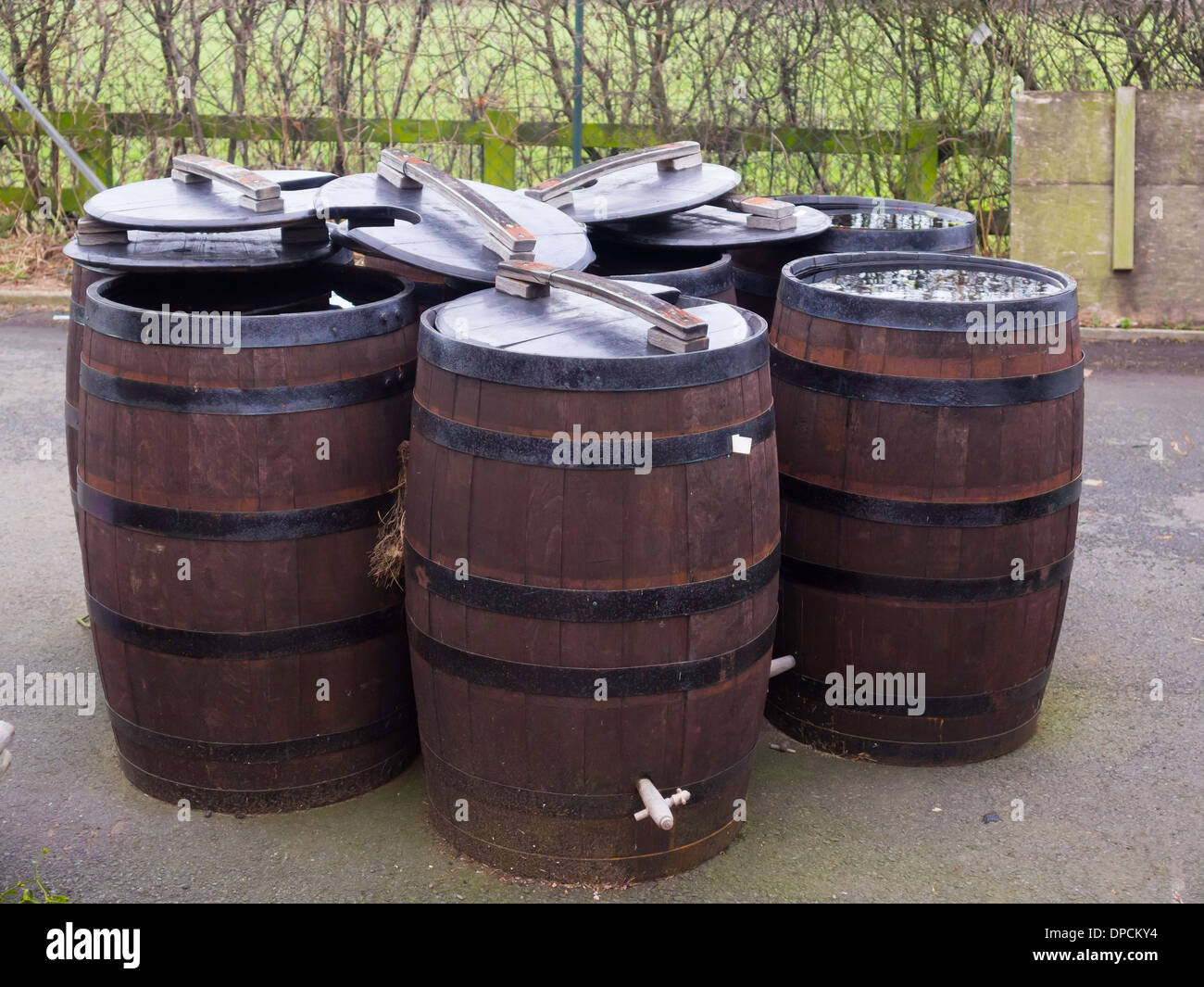 Traditional Wooden Barrels With Iron Hoops For Sale As Water Butts In A  Garden Centre