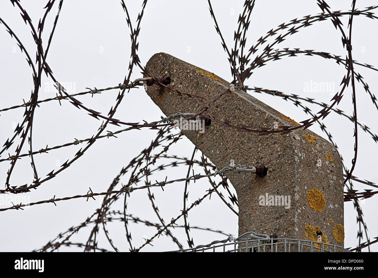 Razor and barbed wire security fence - Stock Image