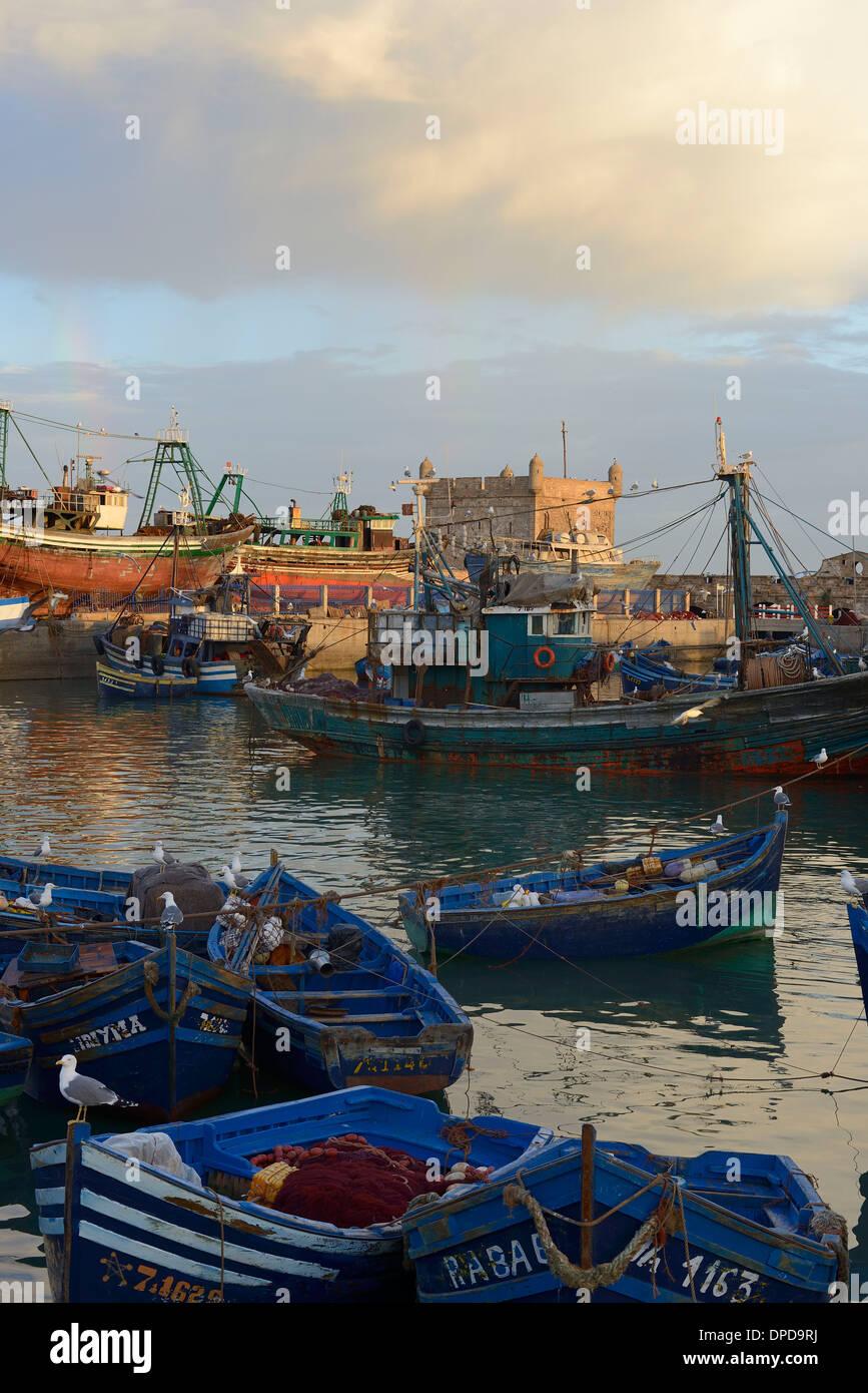 Morocco, Essaouira, the fishing harbor and its shipyard - Stock Image