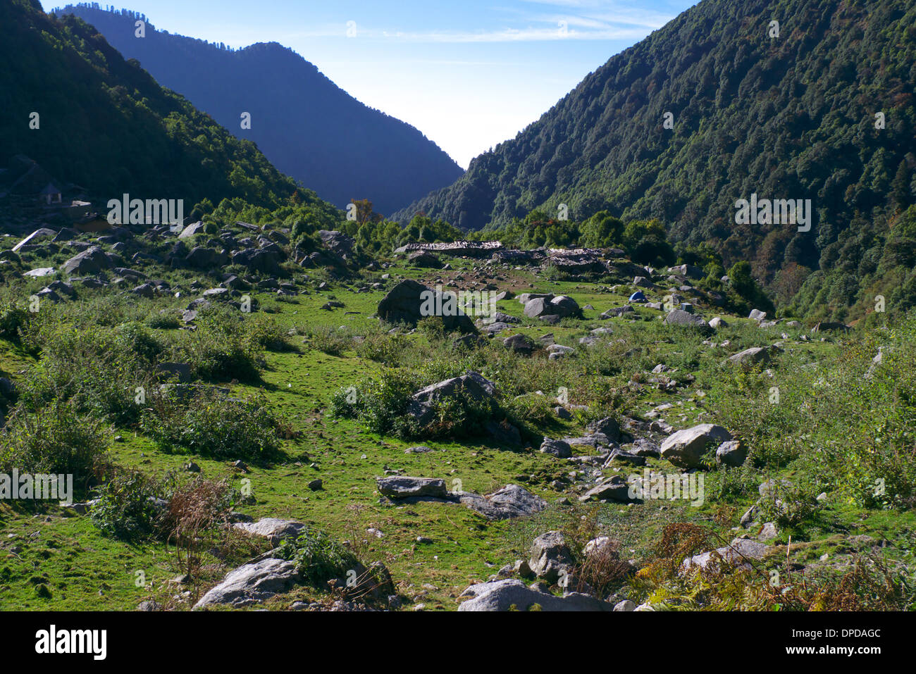 Meadow and wild campsite, Bhaga, nr Mcleodganj, Himachal Pradesh, N. India. - Stock Image