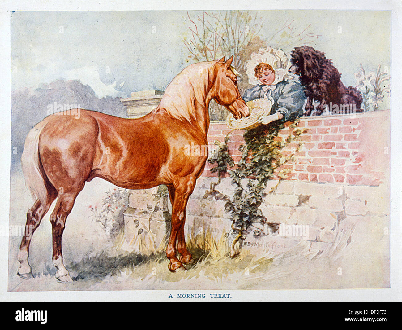 HORSE AND GIRL 1890S - Stock Image