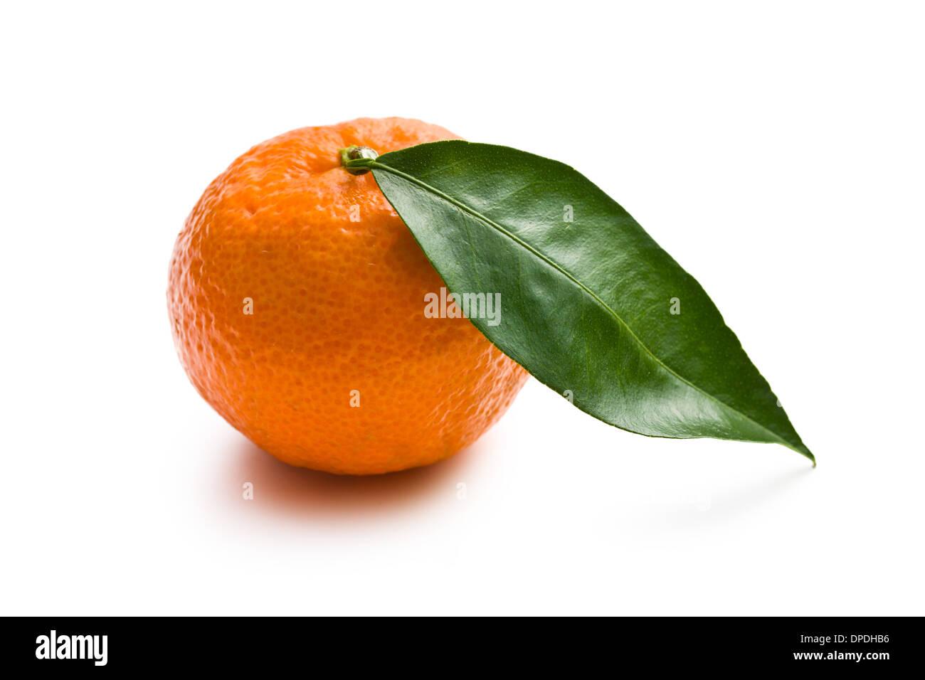 fresh mandarin on white background - Stock Image