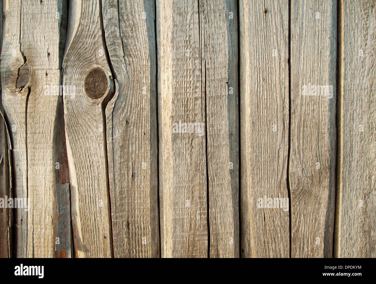 Background of cracked rough planks with knots - Stock Image