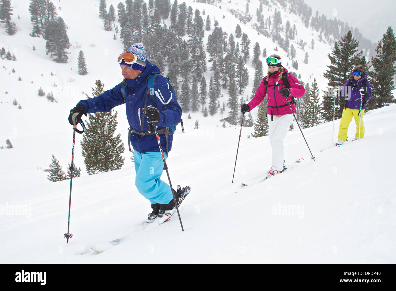 Guide and clients ski touring in Kuhtai , Tirol, Austria Stock Photo