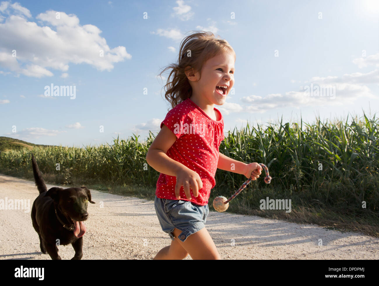 Girl and dog running through field - Stock Image