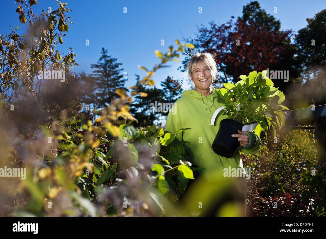Mid adult woman gardening - Stock Image