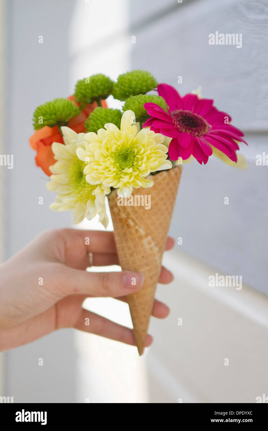 Detail of female hand holding flower cone - Stock Image