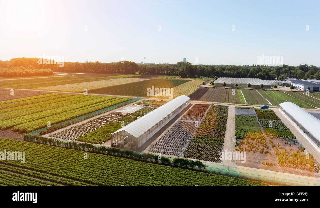 View of fields and greenhouses, Munich, Bavaria, Germany - Stock Image