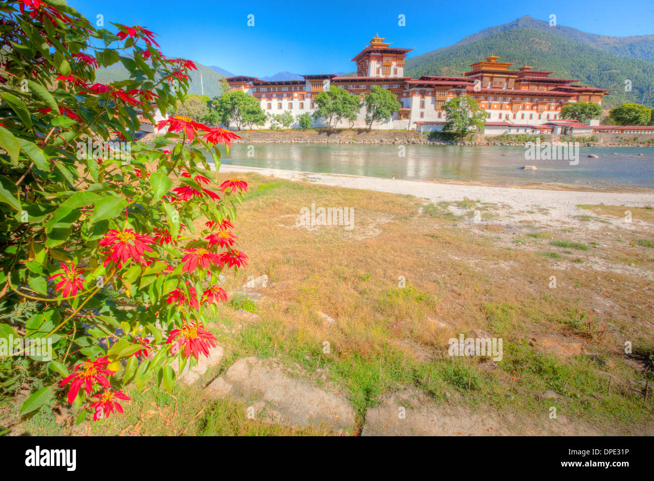 Punakha Dzong Monastery Bhutan Himalaya Mountains Built originally in 1300s Sacred site Bhutanese people on Phochu & Mochu River - Stock Image