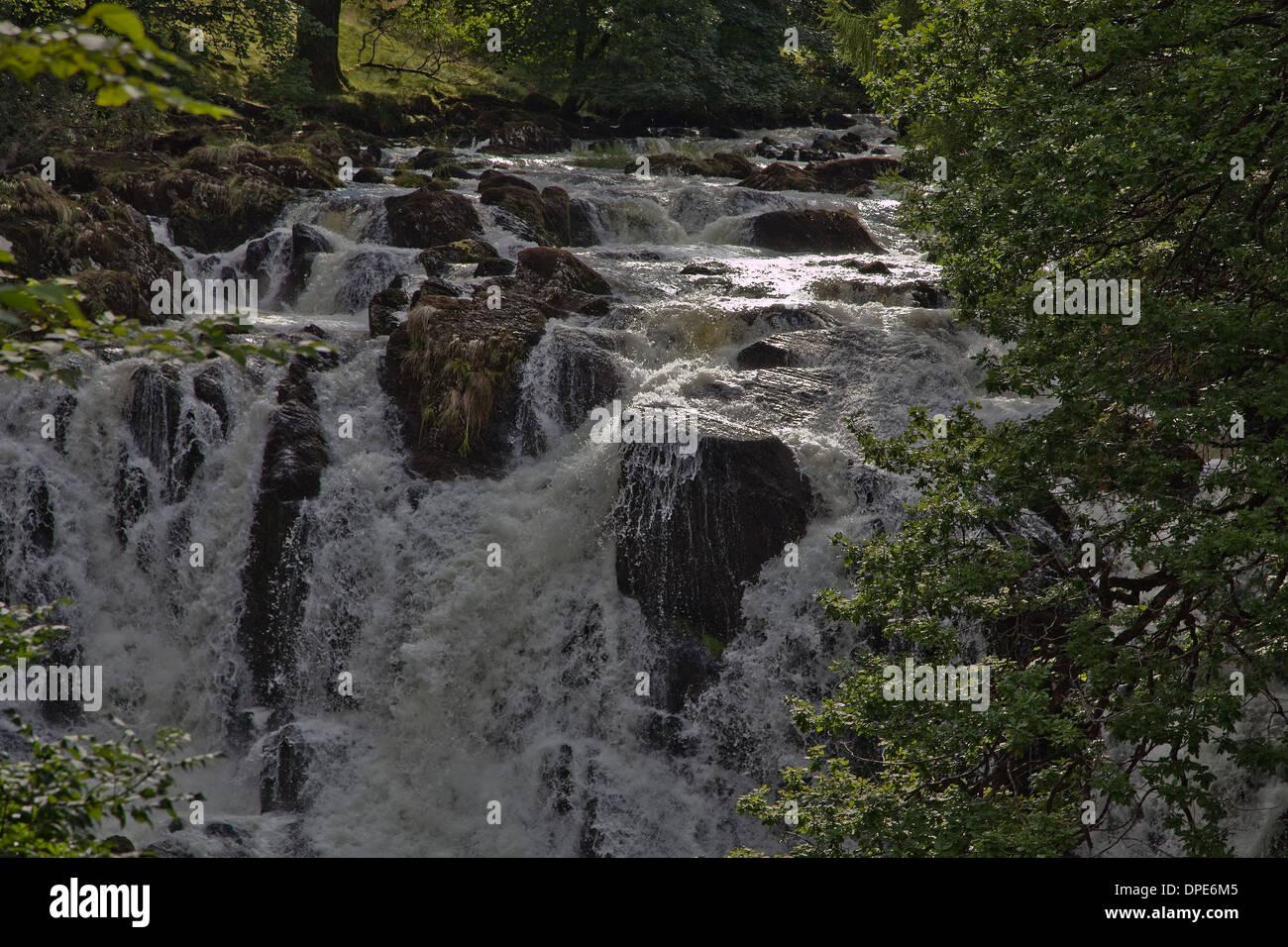 Swallow falls, river Conway Betws-y-Coed, north Wales,GB. - Stock Image
