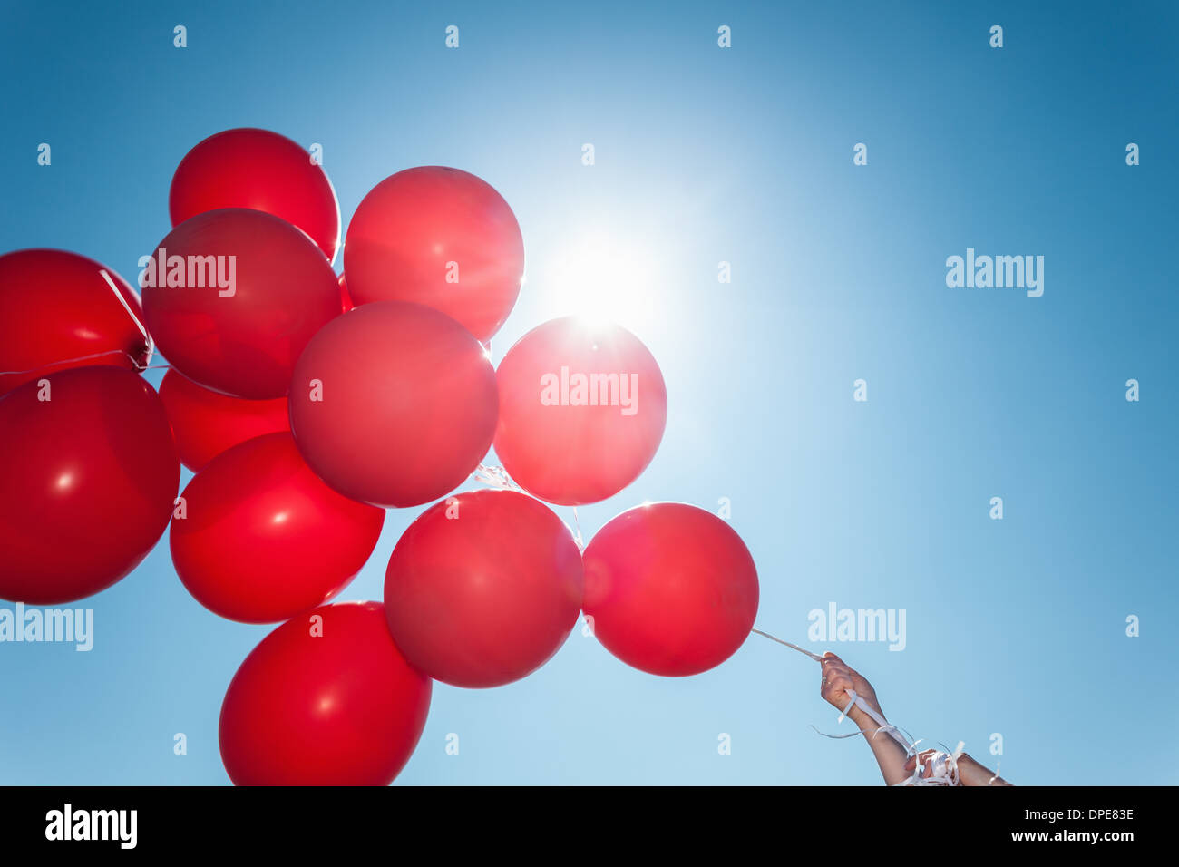 Hands holding bunch of red balloons against blue sky - Stock Image