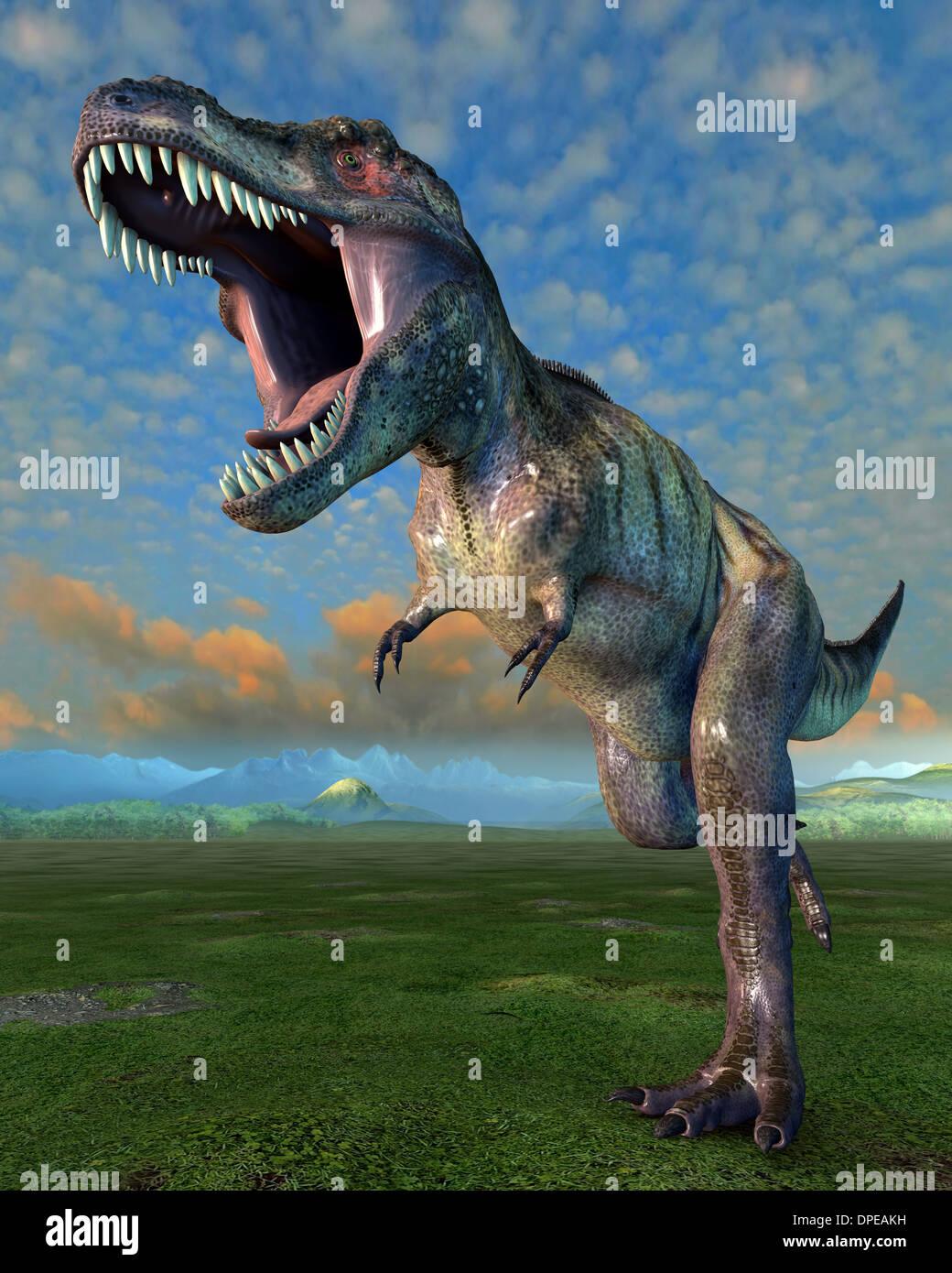 Tyrannosaurus - Stock Image