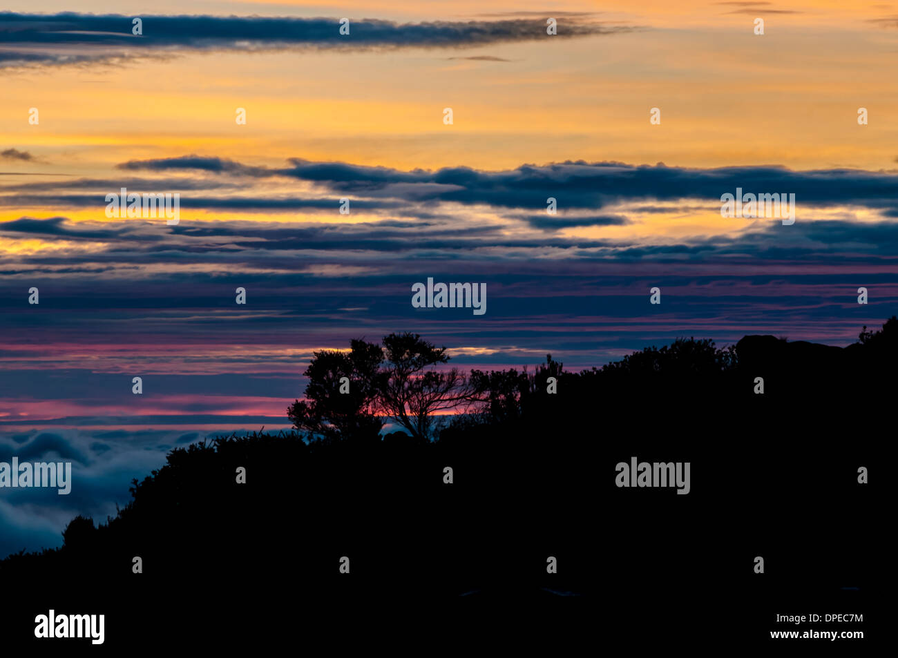 The sunrising over bushes at Kikelelwa Cave Campsite on Kilimanjaro - Stock Image