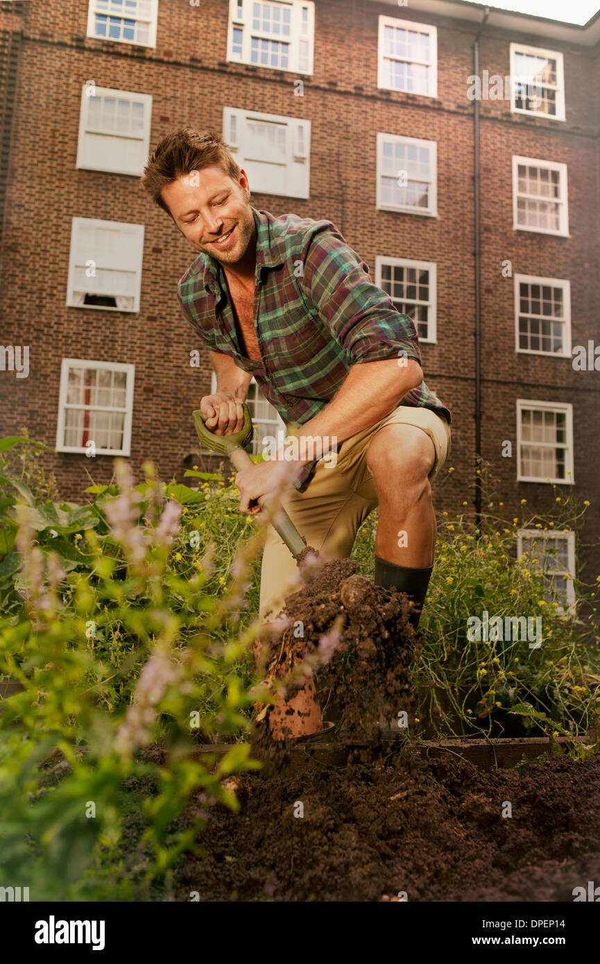 Mid adult man digging on council estate allotment - Stock Image