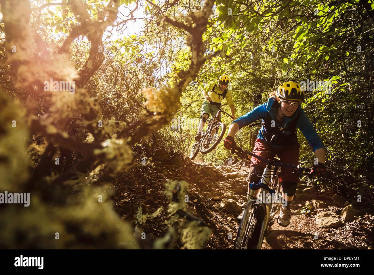Young couple mountain biking, Soquel Demonstration State Forest, Santa Cruz, California, USA - Stock Image