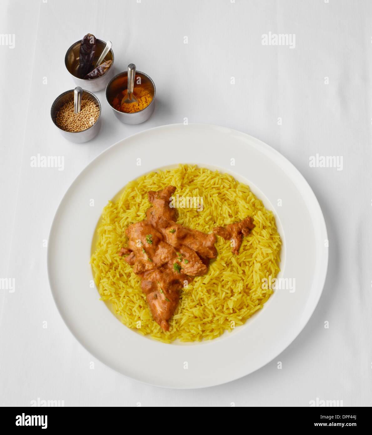 Chicken Tikka Massala in shape of India - Stock Image