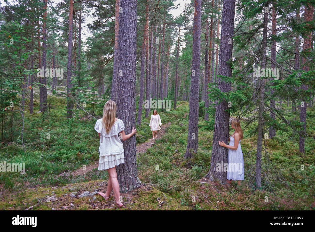 Teenage girls by tree trunks in forest - Stock Image