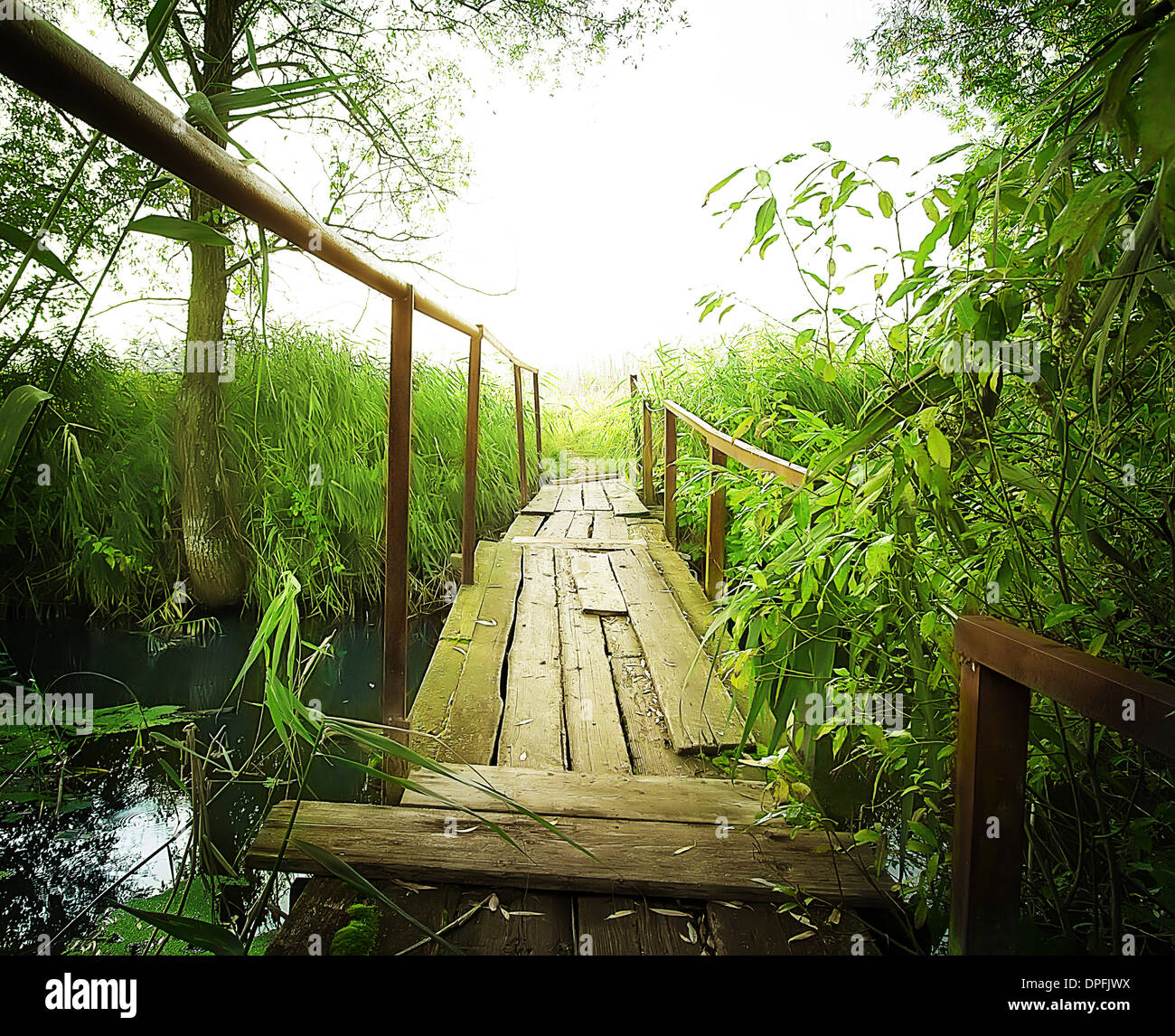 Small Bridges: Old Wooden Bridge Over A Small River Stock Photo: 65497654