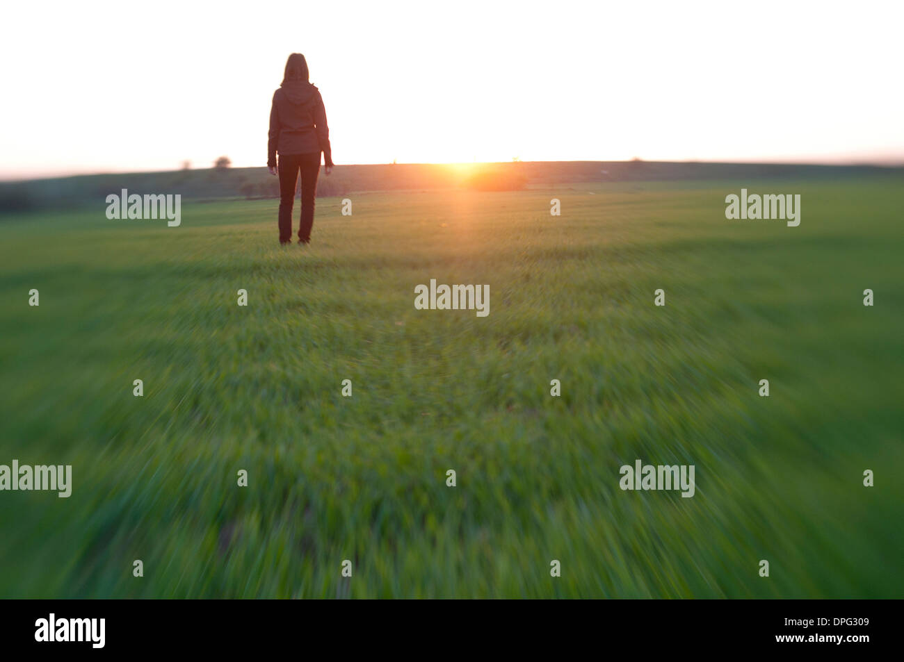 Young woman on a meadow at sunset - Stock Image