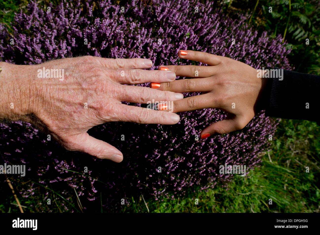Girl man hands - Stock Image