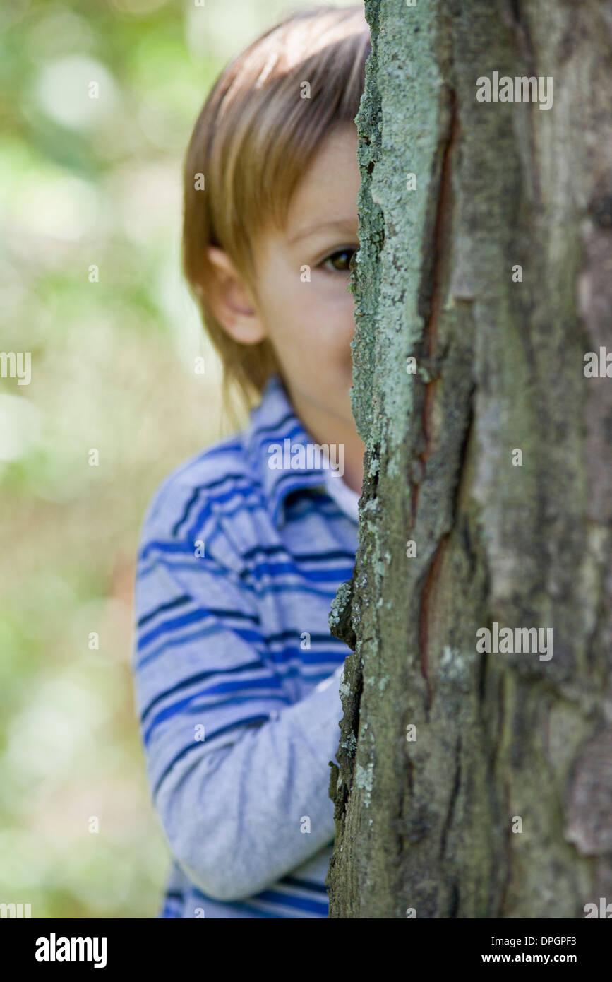 Boy peeking from behind tree - Stock Image