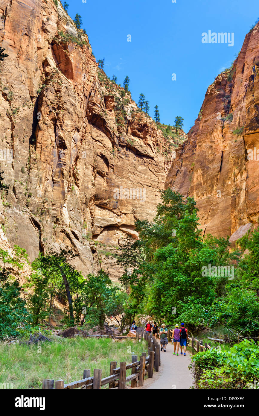 Walkers on the Riverside Walk at Temple of Sinawava, Zion Canyon, Zion National Park, Utah, USA - Stock Image